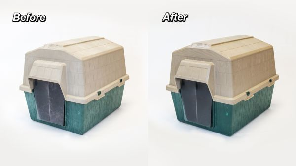 wipe-new-recolor-before-after-pets
